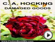 Fiction Book Review: DAMAGED GOODS …