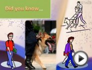 Guide Dogs- Non-fiction Book Trailer